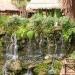 Iberostar Quetzal: un hotel con Zoo en la Riviera Maya