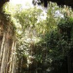 6 cenotes espectaculares que no te puedes perder si viajas a la Riviera Maya