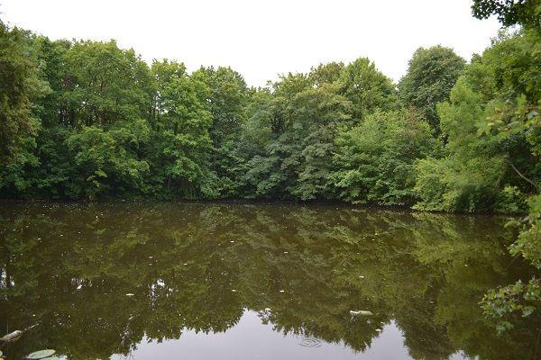 parque Rostock