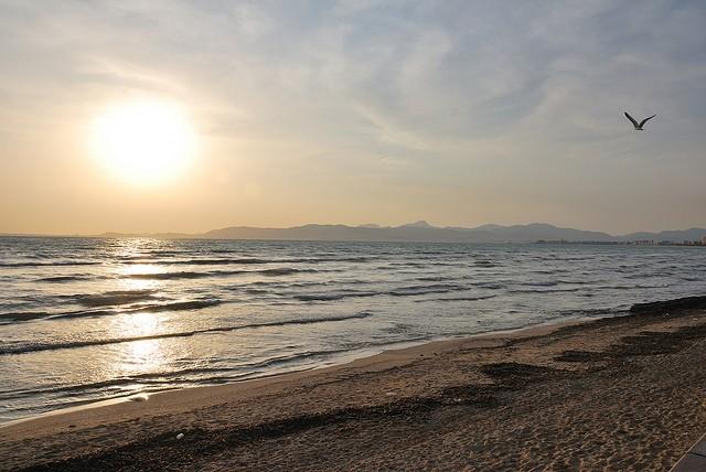 El arenal Palma de Mallorca