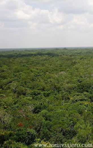 vistas desde la cima de coba Nohoch Mul