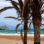 Qué ver en Alicante (ciudad y provincia) ¡Lo que no te puedes perder!