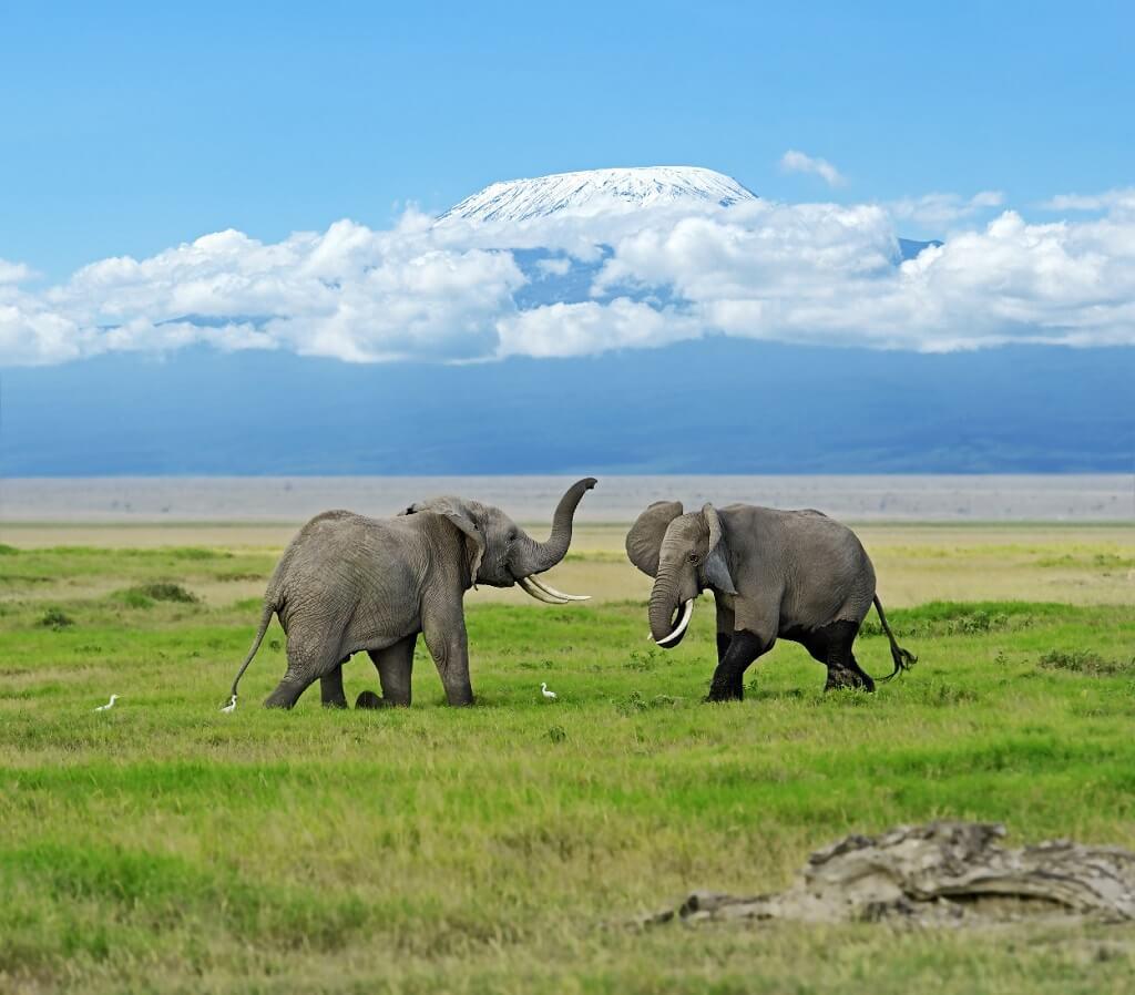 que ver en los valles de kenia