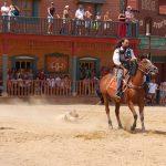 Almería con niños: Los mejores planes para que toda la familia se divierta.