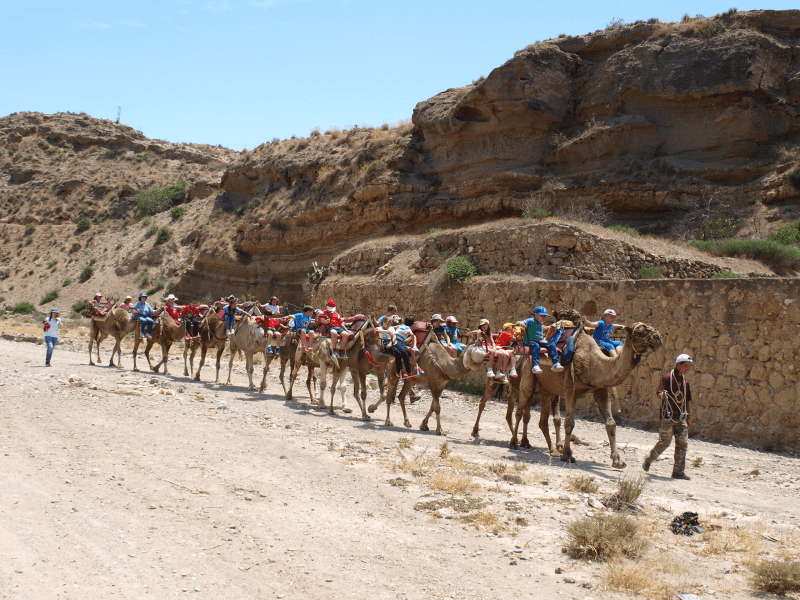 ruta en camello almeria con niños