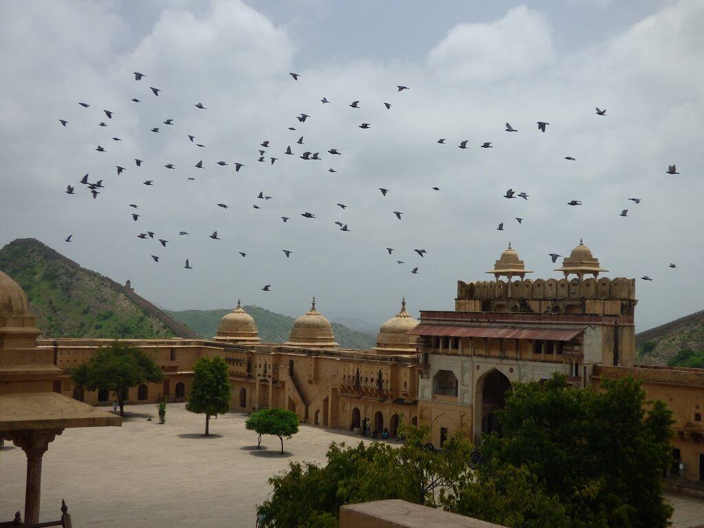 Consejos para visitar India 14