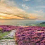 ¿Por qué viajar a Yorkshire? Descubre uno de los condados más bonitos de Inglaterra