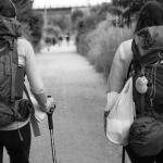 El camino de Santiago: la mejor experiencia para el peregrino