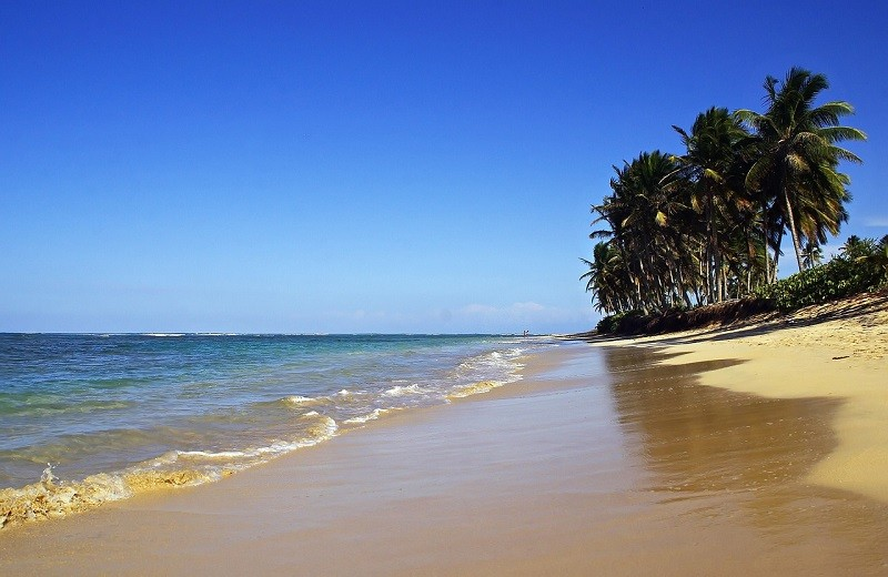 la mejor playa de puntacana playa bavaro