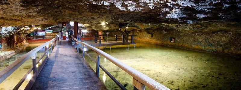 Aquarium de Cap Blanc ibiza
