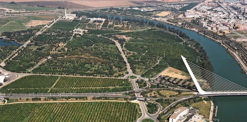 Sevilla-alamillo-niños