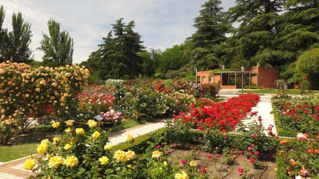 Valladolid jardines de la rosaleda