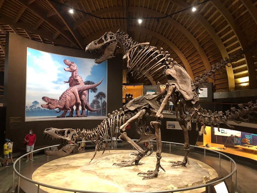 visita al Museo del Jurasico de Asturias