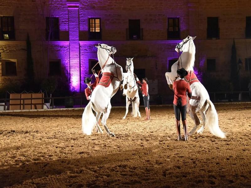 Espectáculo en las Caballerizas Reales, Córdoba