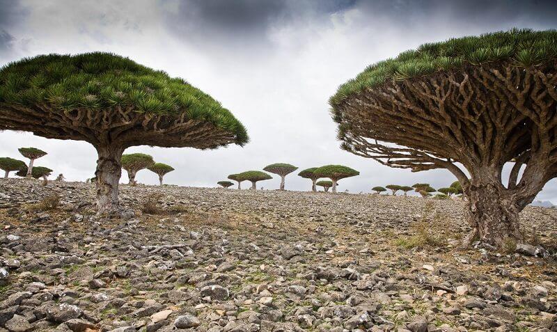 Las islas mas raras y misteriosas del mundo