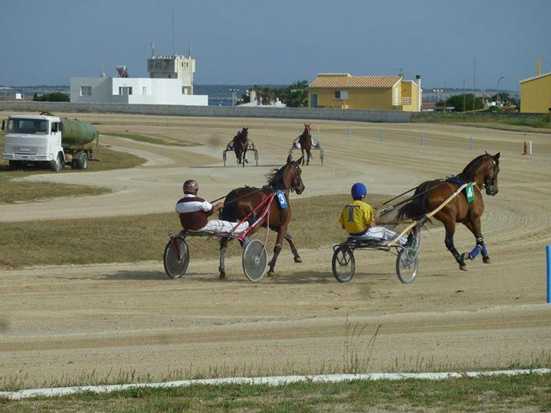 Carreras de Caballos, Menorca