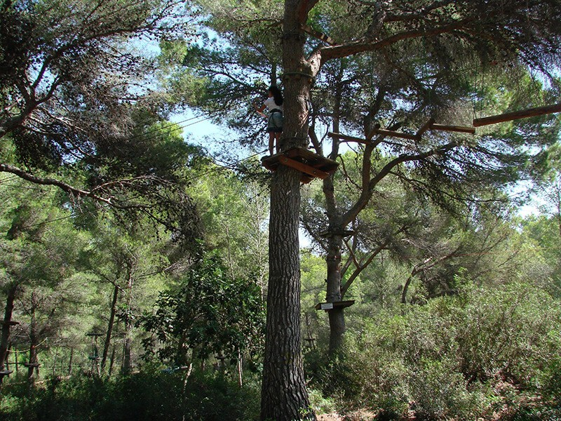 Jungle Parc, Mallorca