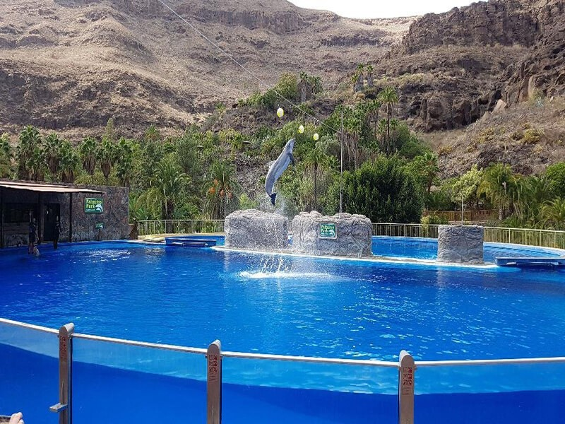 Palmitos Park, Gran Canaria