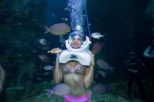 interactive aquarium cancun