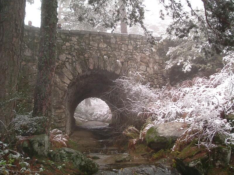 Calzada romana valle de la Fuenfría Cercedilla Madrid