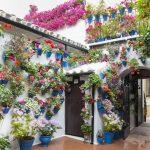 Ruta por los patios de Córdoba